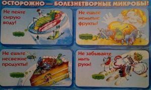 Экологическое воспитание школьников: мероприятия вне школы