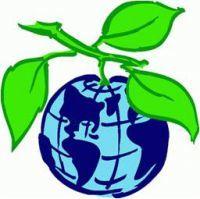 Экологическое воспитание в школе: стихи об охране, защите природы для школьников