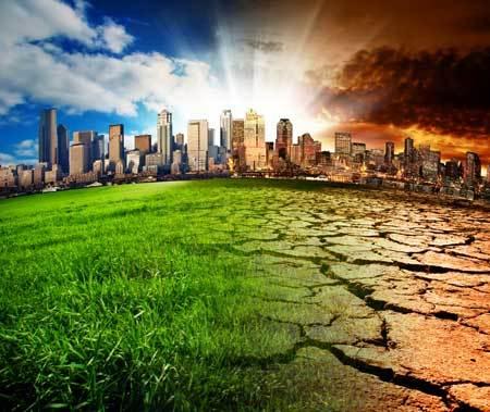 Сценарии сценок для школьников по экологии