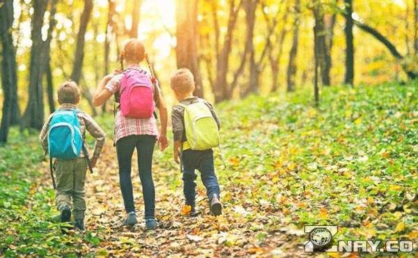 Чему можно научиться, проведя каникулы в деревне?
