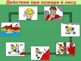 Урок безопасности в начальной школе: что включить в план?