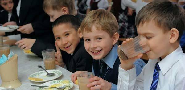 Правила экологического поведения: что нужно знать школьникам?